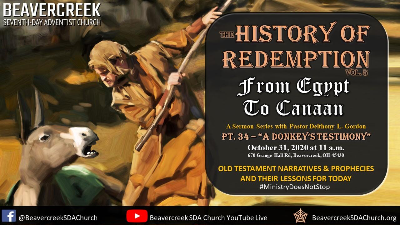 """Part 34 – """"A Donkey's Testimony"""" – From Egypt to Canaan Series"""