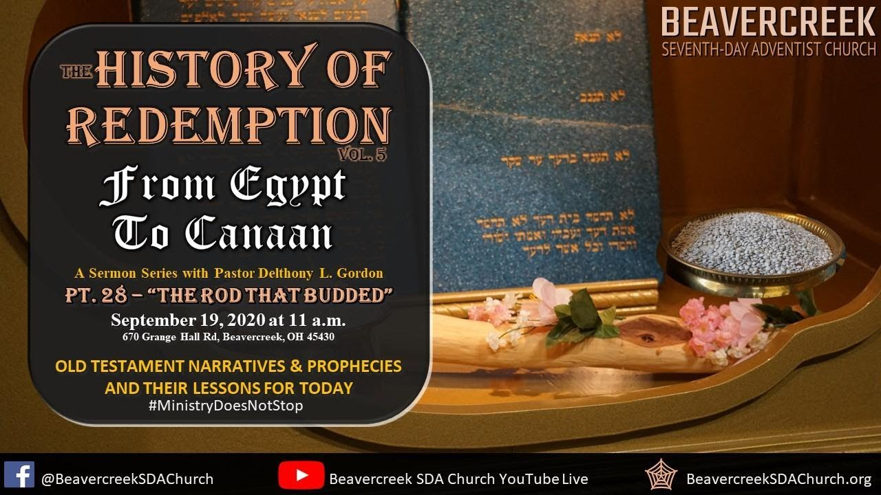 """Part 28 """"The Rod that Budded"""" – From Egypt to Canaan"""